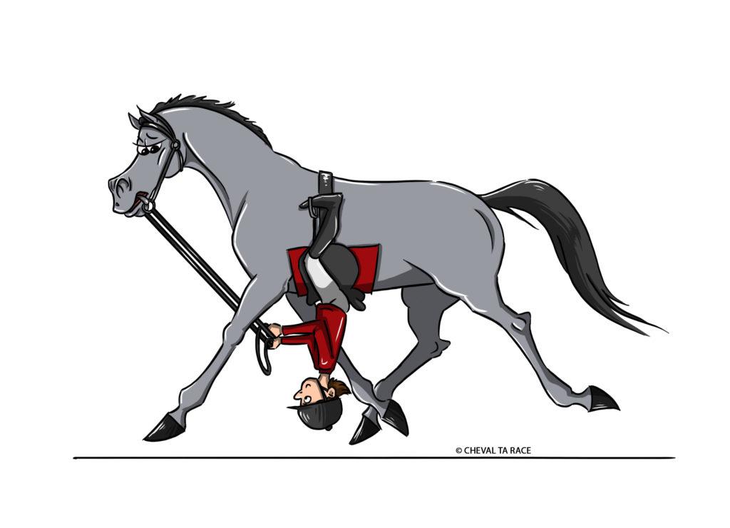 Le cavalier est en dessous de son cheval