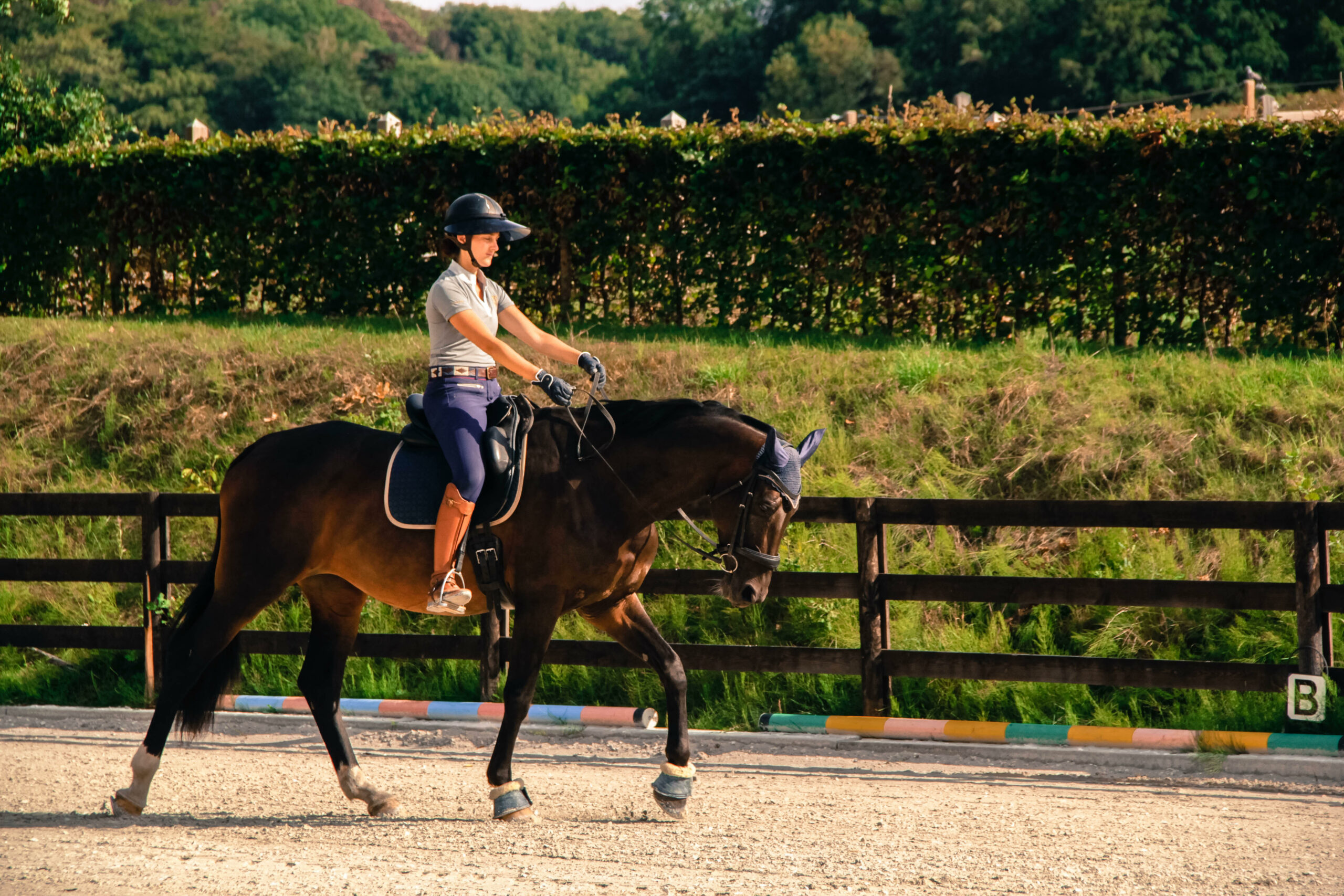... sans que cela ne change l'attitude ou la direction de votre cheval ! (images @D'un Cheval l'Autre)